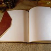 notes-skorzany