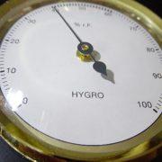 higrometr ze złotą obręczą